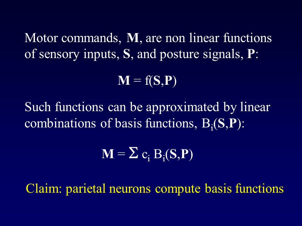 Motor commands, M, are non linear functions of sensory inputs, S, and posture signals, P: M = f(S,P) Such functions can be approximated by linear combinations of basis functions, B i (S,P): M =  c i B i (S,P) Claim: parietal neurons compute basis functions