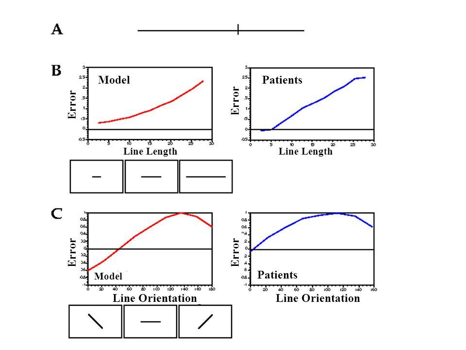 Line Length Line Orientation Line Length Error Model Patients Model