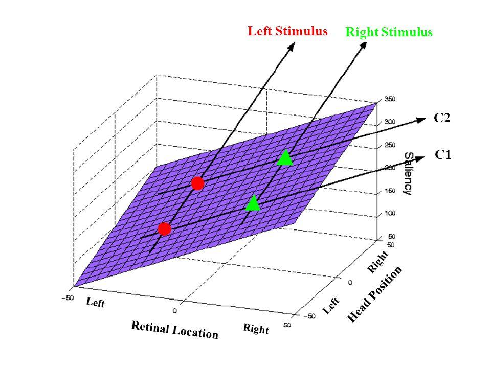 Retinal Location Head Position Left Right Left Left Stimulus Right Stimulus C2 C1