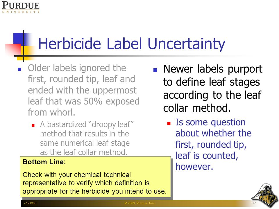 © 2003, Purdue Univ.17v121903 Herbicide Label Uncertainty Older labels ignored the first, rounded tip, leaf and ended with the uppermost leaf that was