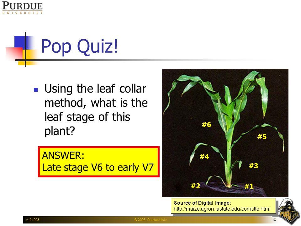 © 2003, Purdue Univ.18v121903 Pop Quiz.
