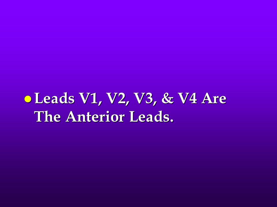 l Leads V1, V2, V3, & V4 Are The Anterior Leads.
