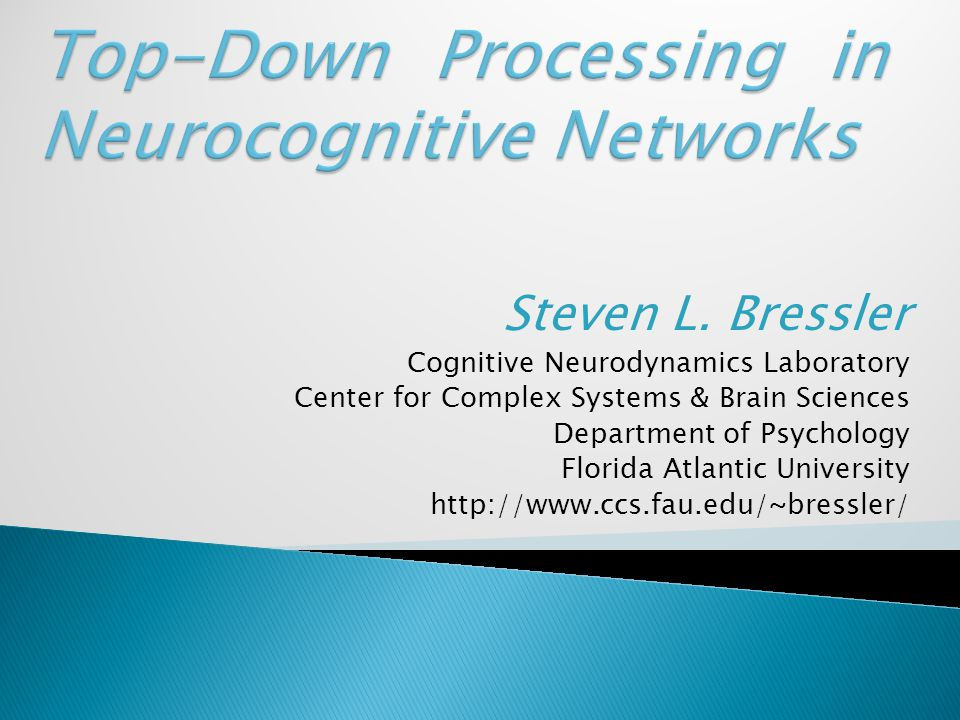 Steven L. Bressler Cognitive Neurodynamics Laboratory Center for Complex Systems & Brain Sciences Department of Psychology Florida Atlantic University