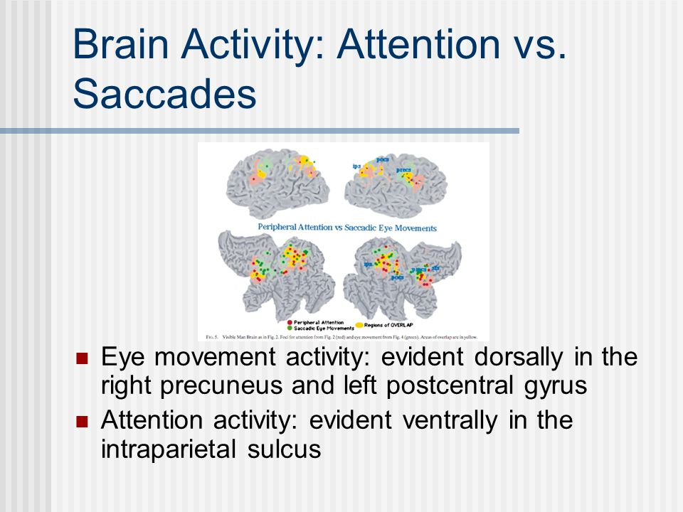 Brain Activity: Attention vs.