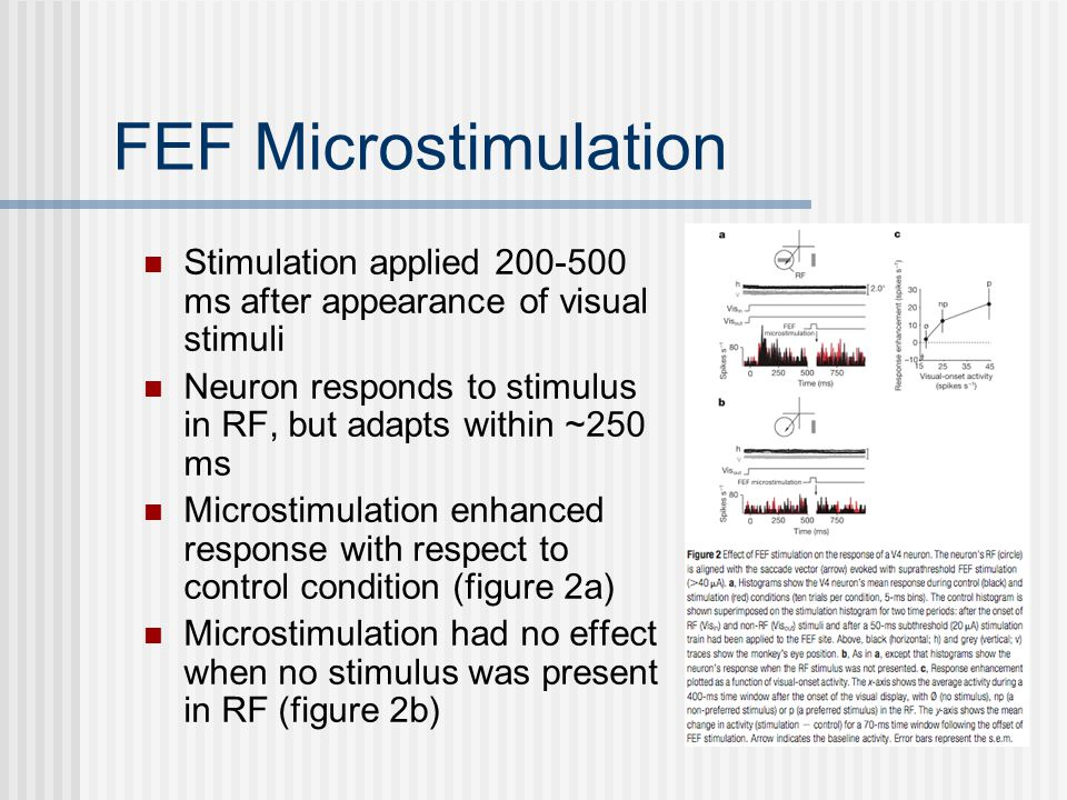 FEF Microstimulation Stimulation applied 200-500 ms after appearance of visual stimuli Neuron responds to stimulus in RF, but adapts within ~250 ms Microstimulation enhanced response with respect to control condition (figure 2a) Microstimulation had no effect when no stimulus was present in RF (figure 2b)