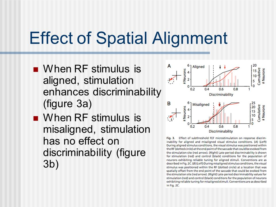 Effect of Spatial Alignment When RF stimulus is aligned, stimulation enhances discriminability (figure 3a) When RF stimulus is misaligned, stimulation has no effect on discriminability (figure 3b)