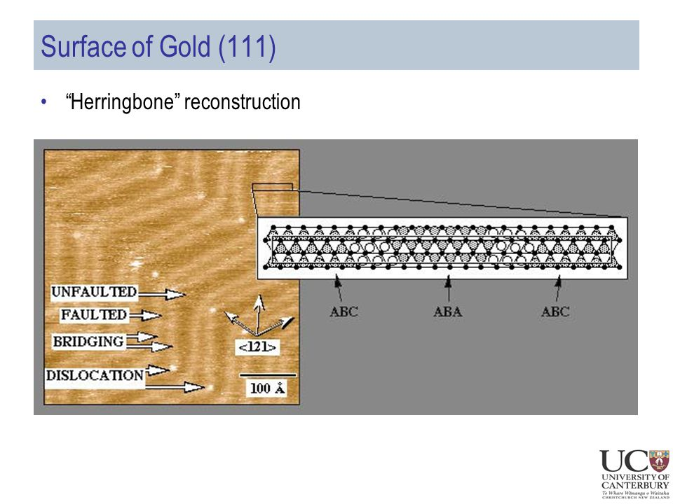 Surface of Gold (111) Herringbone reconstruction