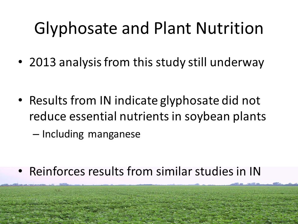 Glyphosate and Plant Nutrition 2013 analysis from this study still underway Results from IN indicate glyphosate did not reduce essential nutrients in soybean plants – Including manganese Reinforces results from similar studies in IN