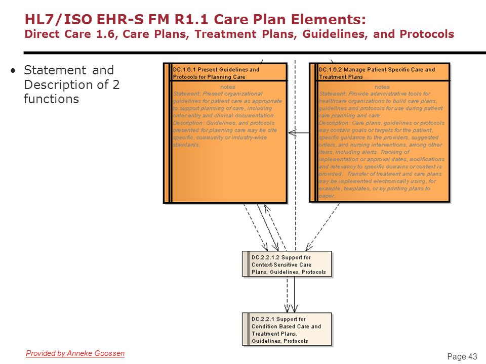 Page 43 HL7/ISO EHR-S FM R1.1 Care Plan Elements: Direct Care 1.6, Care Plans, Treatment Plans, Guidelines, and Protocols Statement and Description of 2 functions Provided by Anneke Goossen