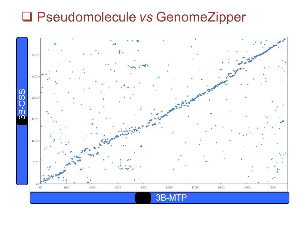 3B-MTP 3B-CSS  Pseudomolecule vs GenomeZipper