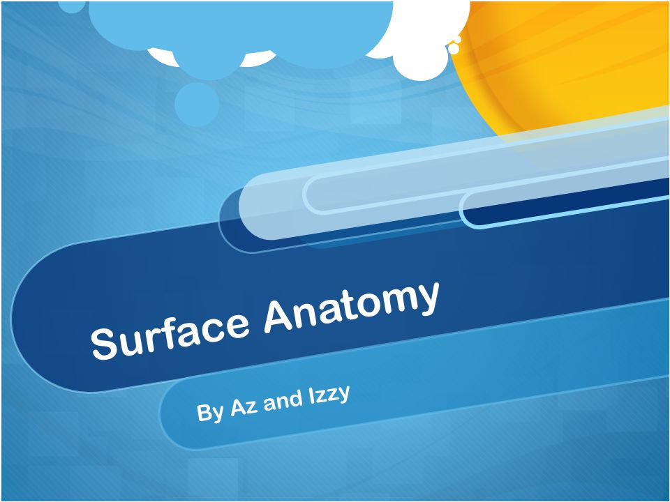 Surface Anatomy By Az and Izzy