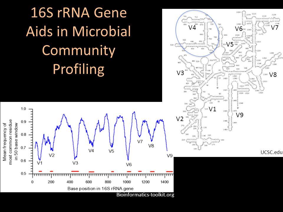 16S rRNA Gene Aids in Microbial Community Profiling V4 UCSC.edu Bioinformatics-toolkit.org V5 V3 V2 V1 V7 V8 V9 V6