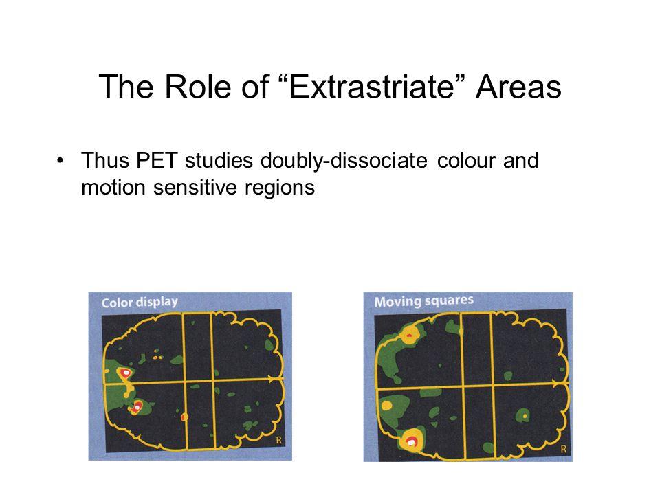 Thus PET studies doubly-dissociate colour and motion sensitive regions