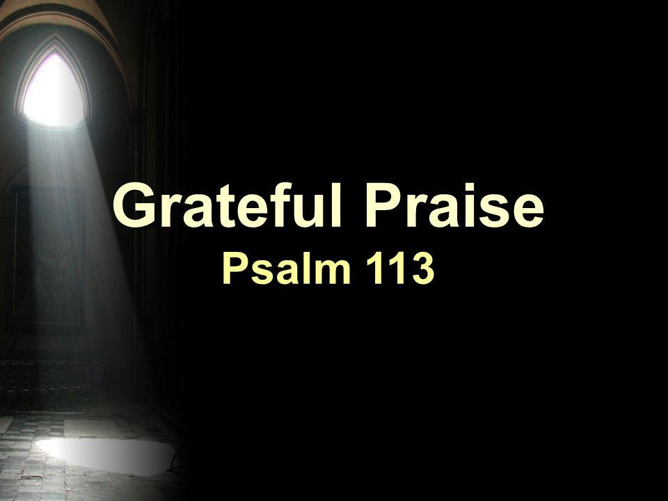 Grateful Praise Psalm 113