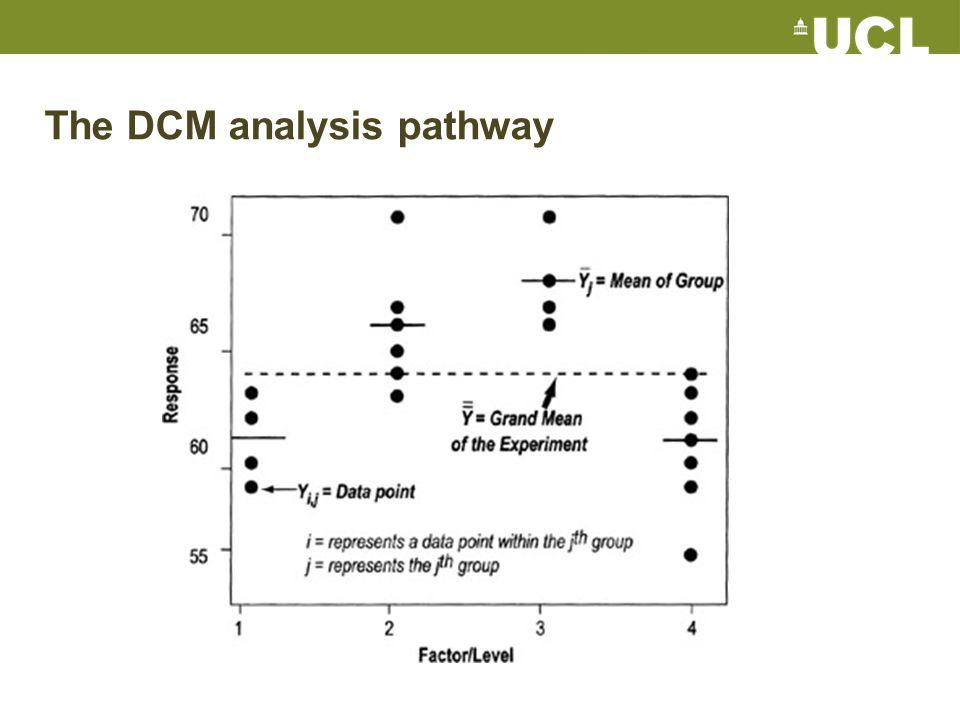 The DCM analysis pathway