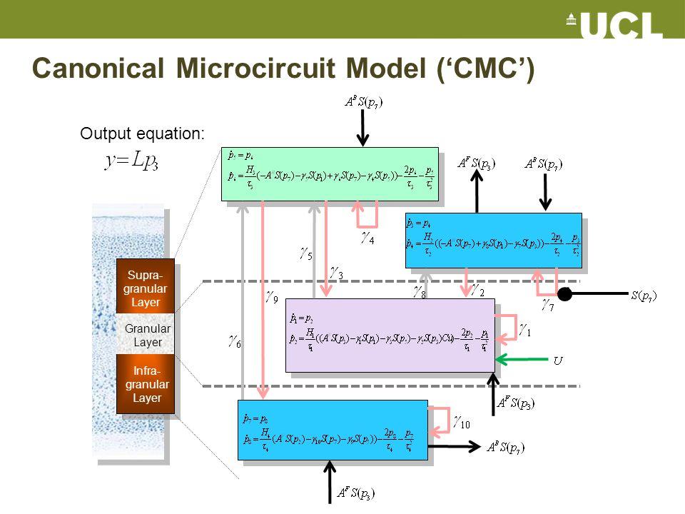 Canonical Microcircuit Model ('CMC') Granular Layer Supra- granular Layer Infra- granular Layer Output equation: