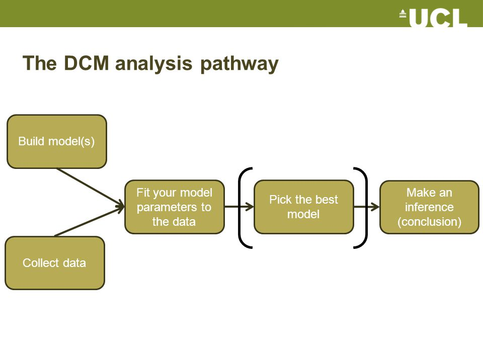 Collect data Build model(s) Fit your model parameters to the data Pick the best model Make an inference (conclusion) The DCM analysis pathway