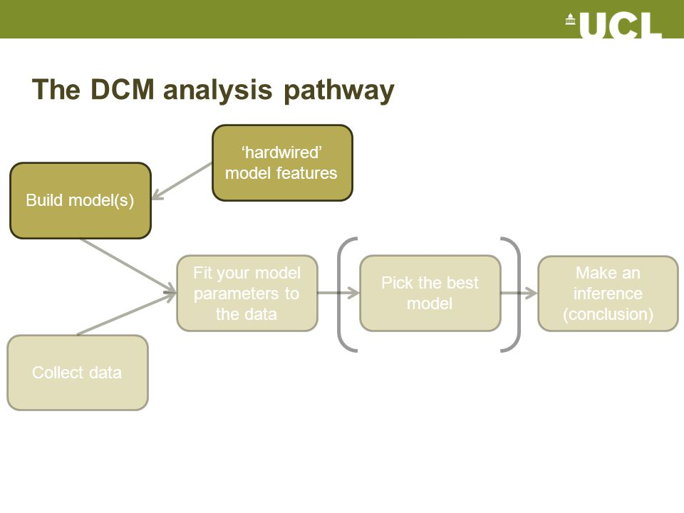 Collect data Build model(s) Fit your model parameters to the data Pick the best model Make an inference (conclusion) The DCM analysis pathway 'hardwired' model features