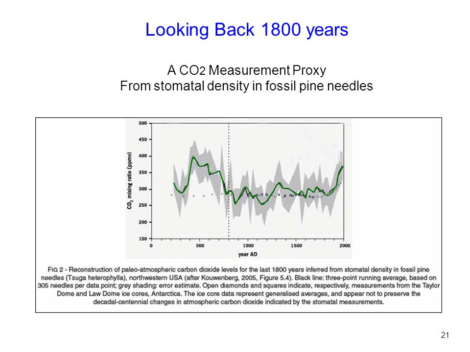 Looking Back 1800 years A CO 2 Measurement Proxy From stomatal density in fossil pine needles 21