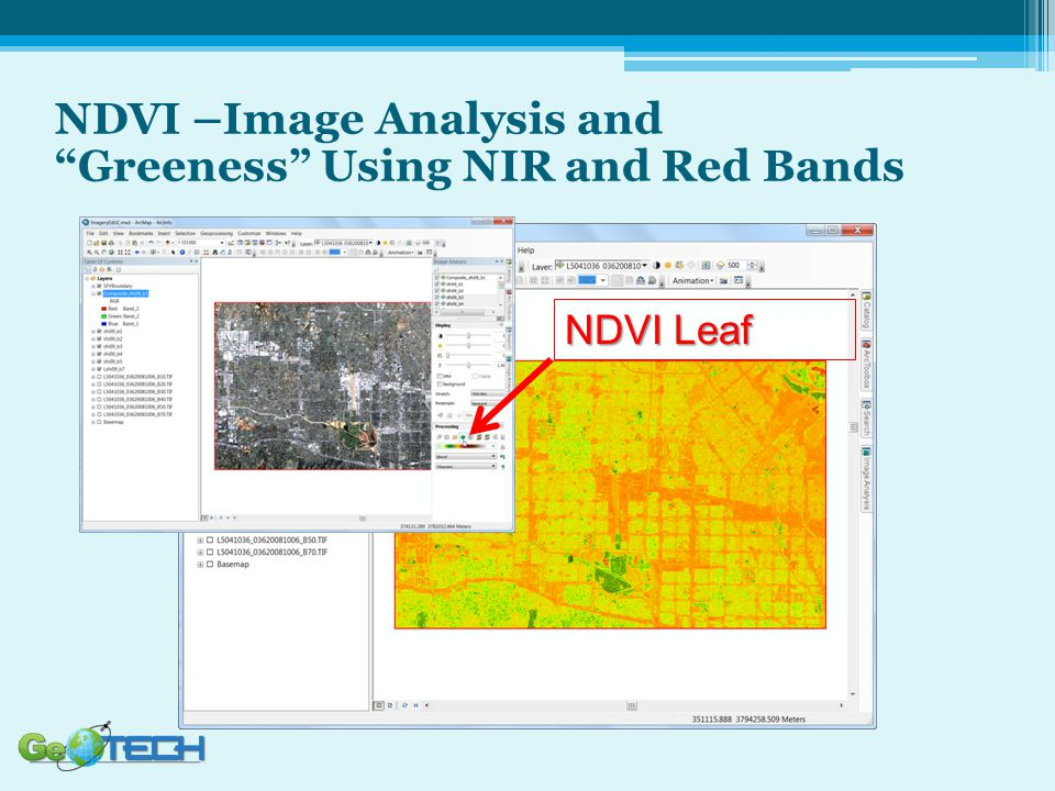 NDVI Leaf NDVI –Image Analysis and Greeness Using NIR and Red Bands
