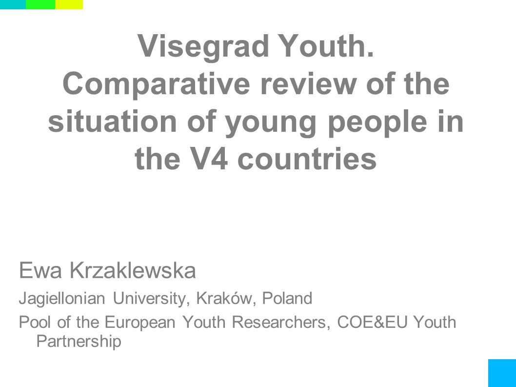 Visegrad Youth.