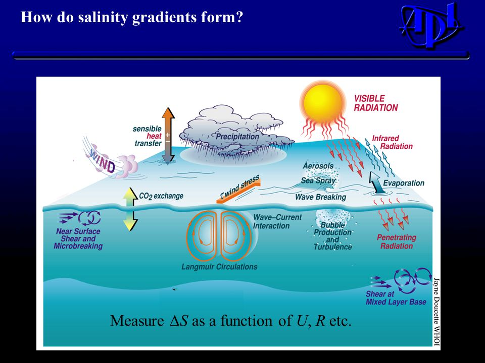 How do salinity gradients form Measure  S as a function of U, R etc.