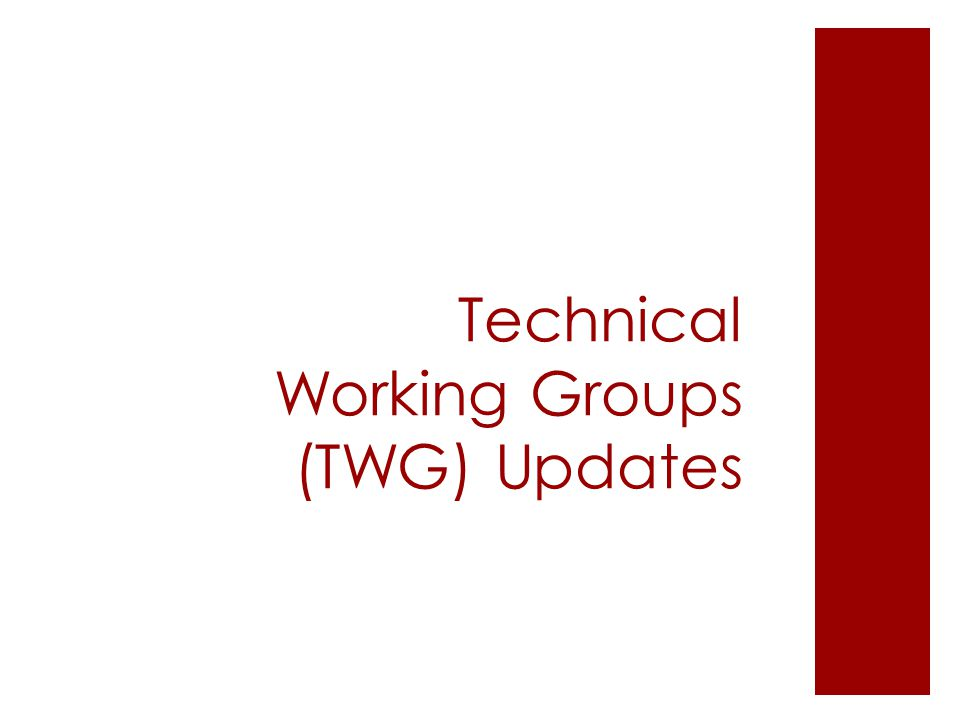 Technical Working Groups (TWG) Updates