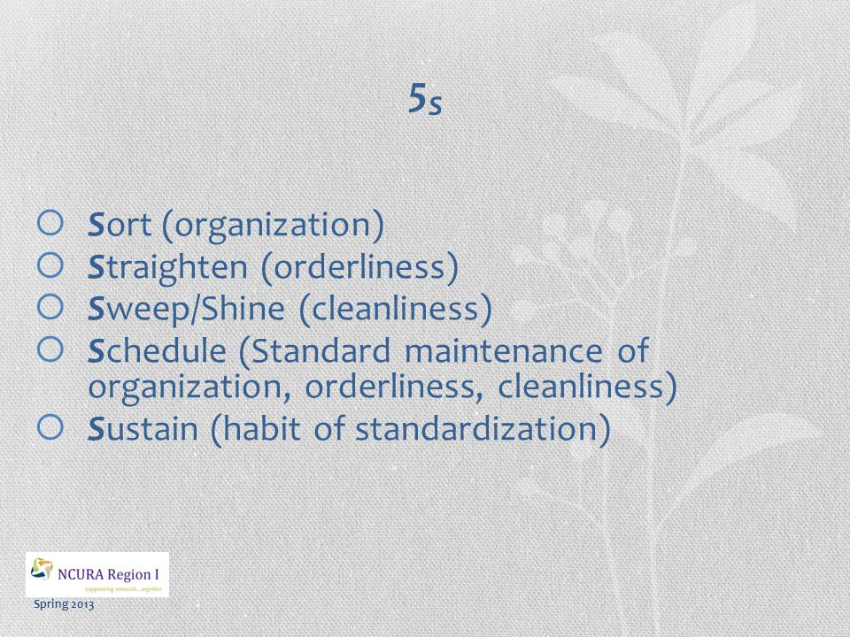 Spring 2013 5S5S  Sort (organization)  Straighten (orderliness)  Sweep/Shine (cleanliness)  Schedule (Standard maintenance of organization, orderliness, cleanliness)  Sustain (habit of standardization)