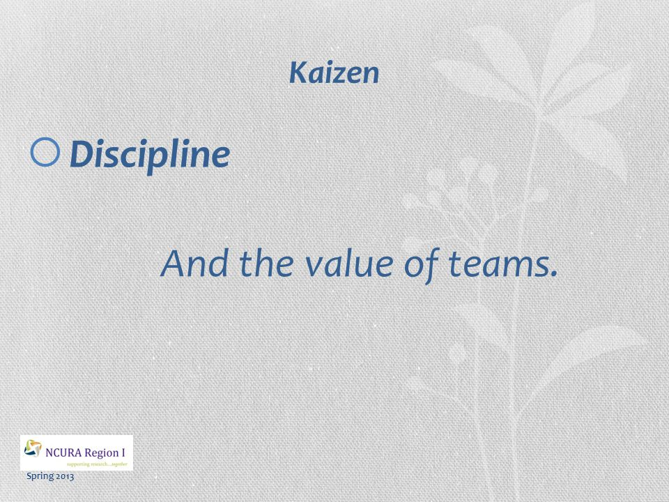 Spring 2013 Kaizen Practices Plan > Do > Check > Act >  PLAN: ID the problem, suggest suggestions;  DO: Implement;  CHECK: Measure and assess, seek feedback;  ACT: Evaluate; design improvements.