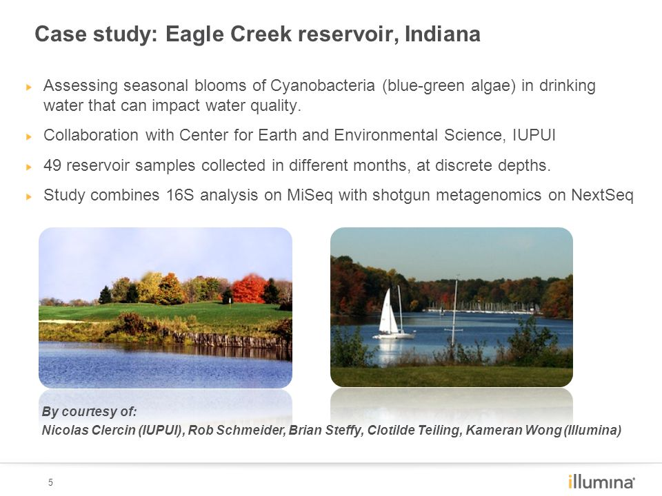 5 Assessing seasonal blooms of Cyanobacteria (blue-green algae) in drinking water that can impact water quality. Collaboration with Center for Earth a