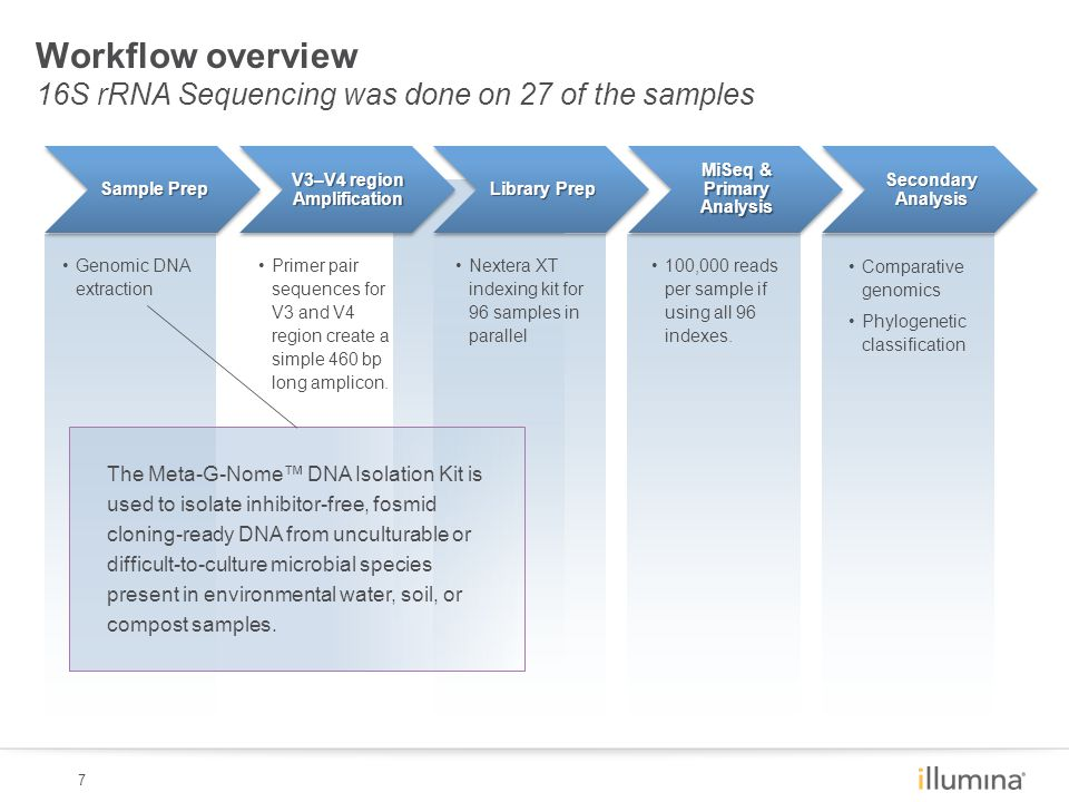 7 Workflow overview 16S rRNA Sequencing was done on 27 of the samples Primer pair sequences for V3 and V4 region create a simple 460 bp long amplicon.