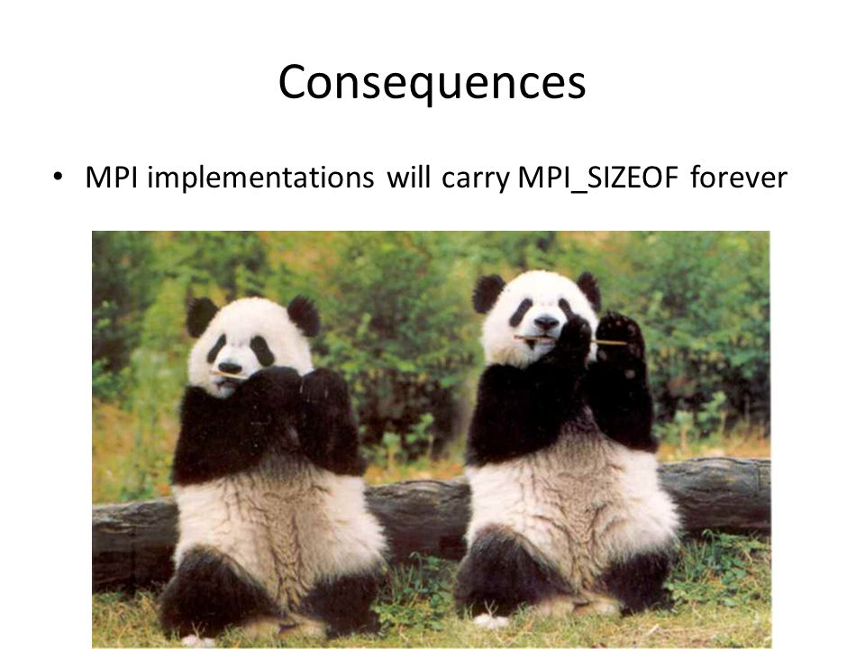 Consequences MPI implementations will carry MPI_SIZEOF forever