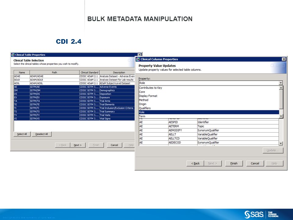 Copyright © 2013, SAS Institute Inc. All rights reserved. CDI 2.4 BULK METADATA MANIPULATION