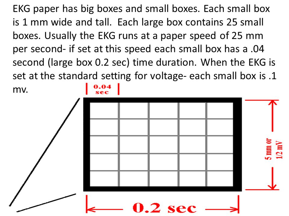 EKG paper has big boxes and small boxes. Each small box is 1 mm wide and tall. Each large box contains 25 small boxes. Usually the EKG runs at a paper