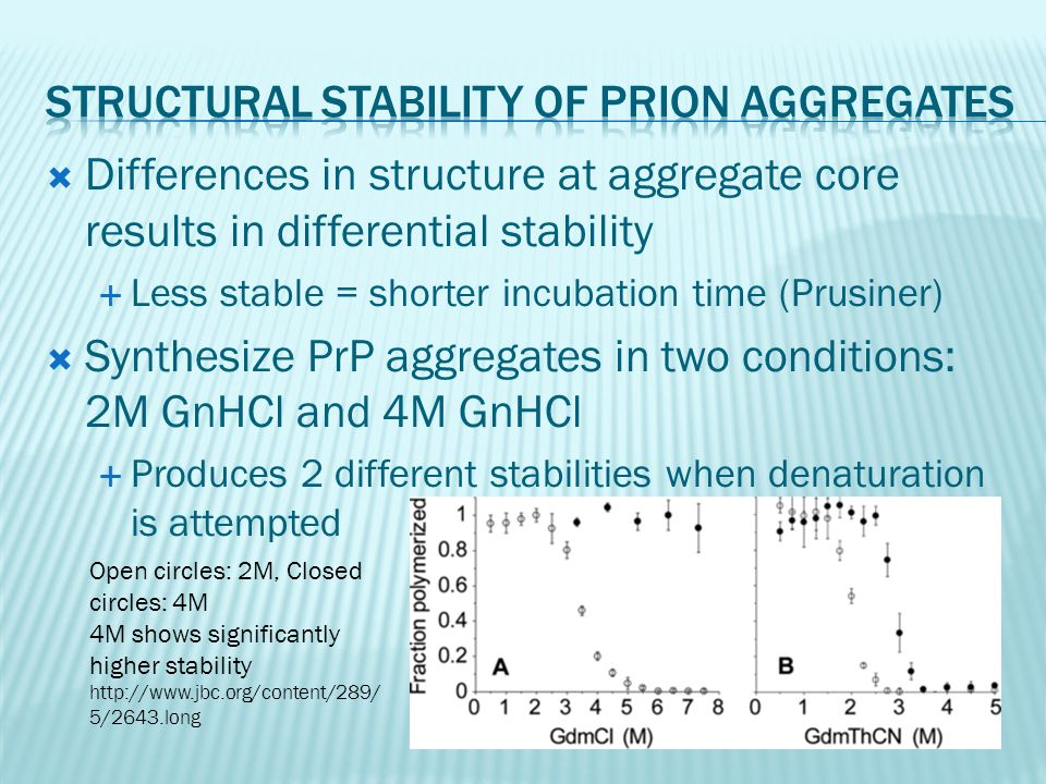  Differences in structure at aggregate core results in differential stability  Less stable = shorter incubation time (Prusiner)  Synthesize PrP agg