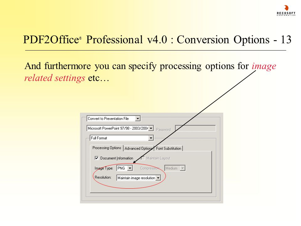 PDF2Office ® Professional v4.0 : Conversion Options - 13 And furthermore you can specify processing options for image related settings etc…