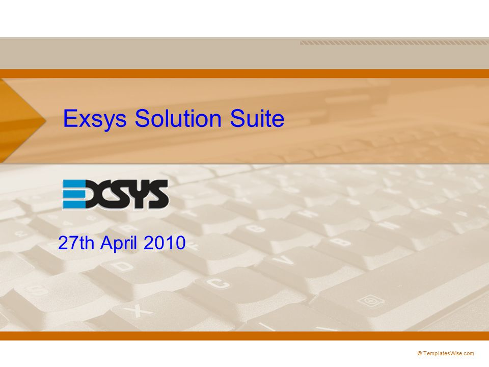 Exsys Solution Suite 27th April 2010 © TemplatesWise.com