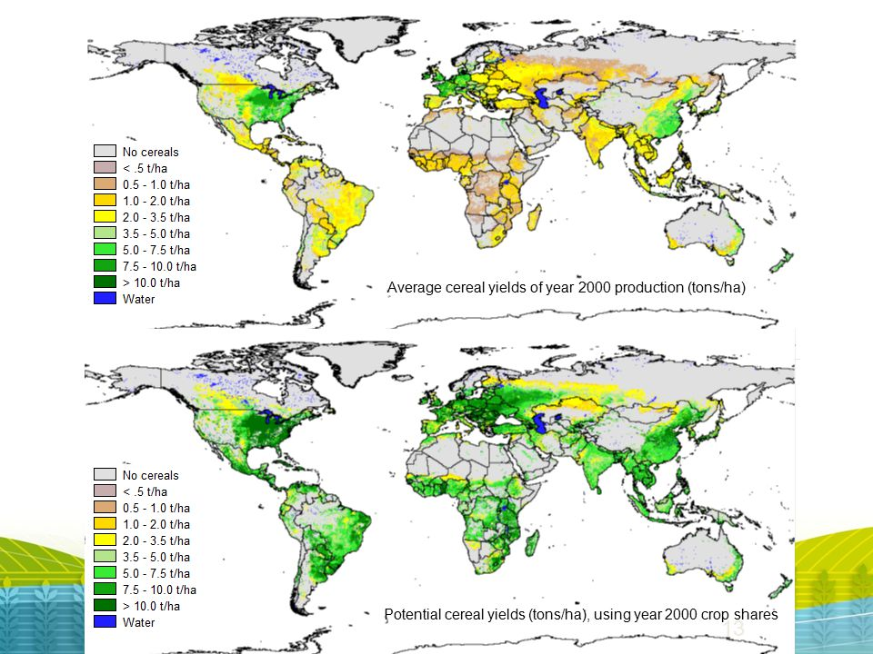 Average cereal yields of year 2000 production (tons/ha) Potential cereal yields (tons/ha), using year 2000 crop shares 13