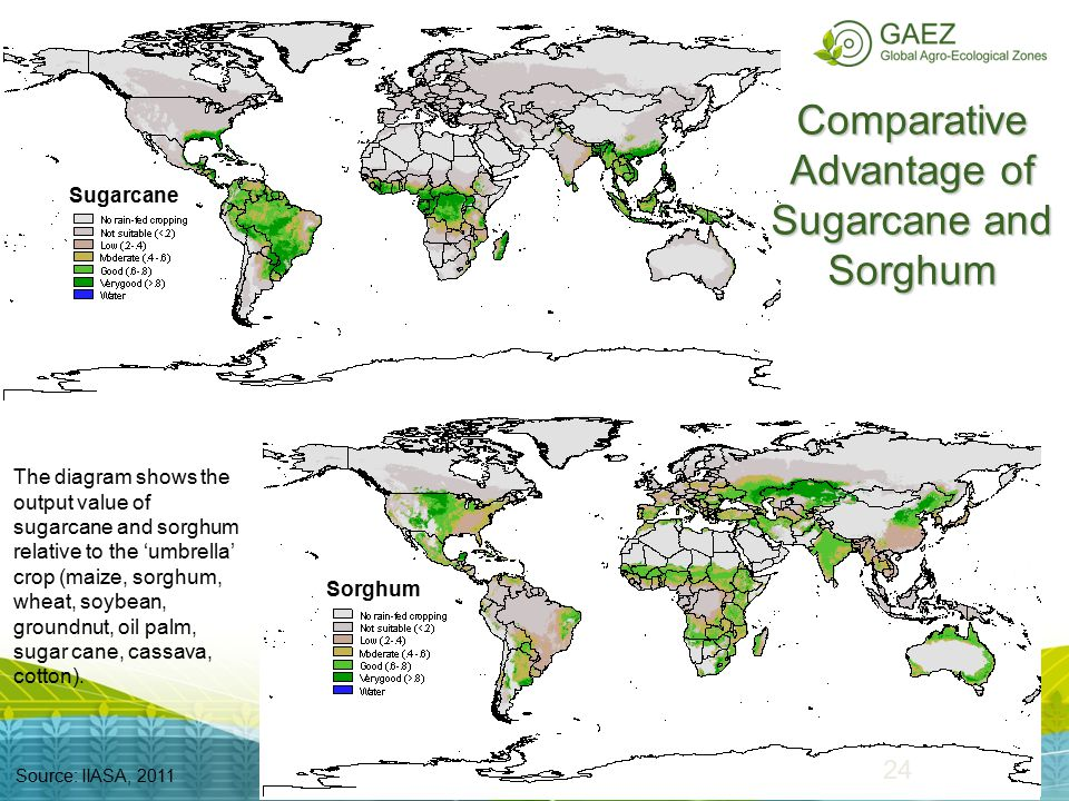 24 Comparative Advantage of Sugarcane and Sorghum Source: IIASA, 2011 Sugarcane Sorghum The diagram shows the output value of sugarcane and sorghum re