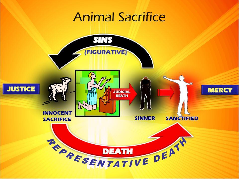 Animal Sacrifice SINNER SANCTIFIED INNOCENT SACRIFICE (FIGURATIVE) JUSTICEJUSTICE MERCYMERCY JUDICIALDEATHJUDICIALDEATH