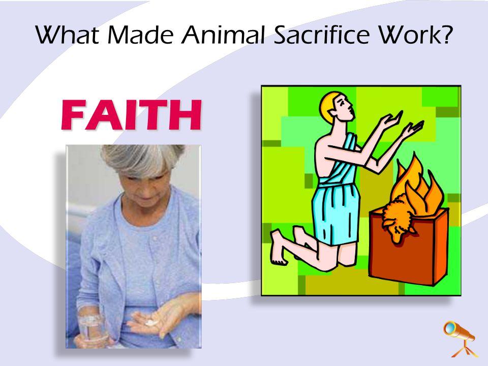 FAITH What Made Animal Sacrifice Work?