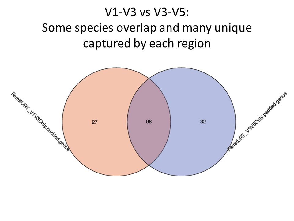 V1-V3 vs V3-V5: Some species overlap and many unique captured by each region