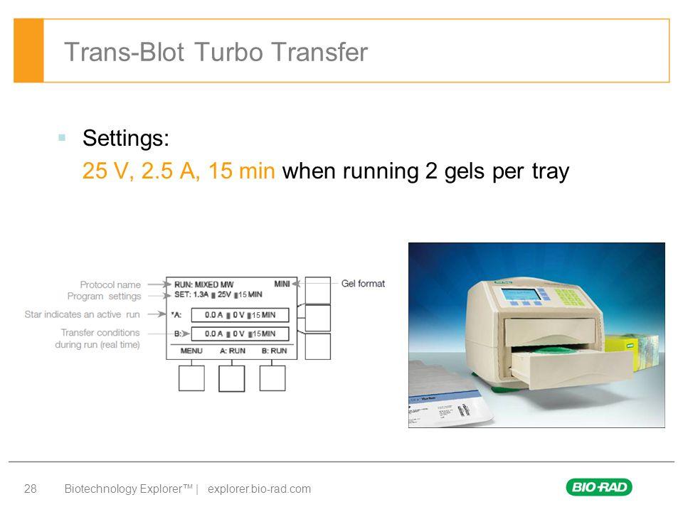 Biotechnology Explorer™ | explorer.bio-rad.com 28 Trans-Blot Turbo Transfer  Settings: 25 V, 2.5 A, 15 min when running 2 gels per tray 15