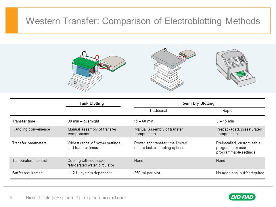 Biotechnology Explorer™ | explorer.bio-rad.com 9 Western Transfer: Comparison of Electroblotting Methods Transfer time30 min – overnight 15 – 60 min 3