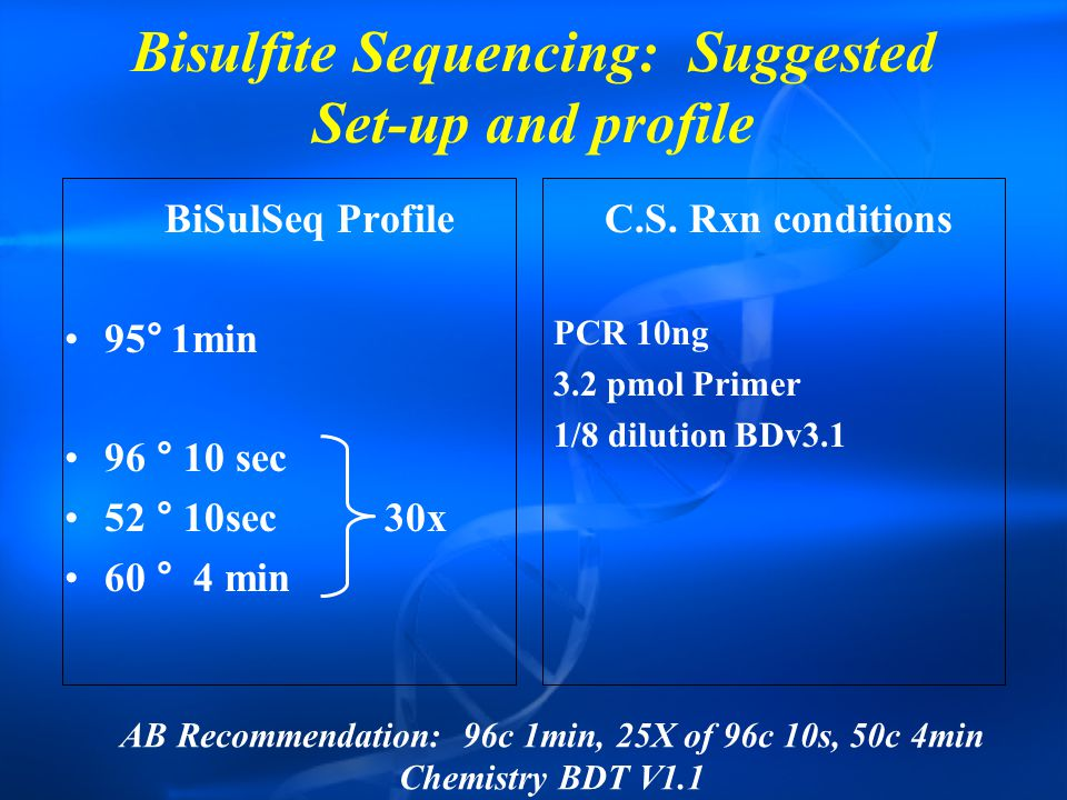 Bisulfite Sequencing: Suggested Set-up and profile BiSulSeq Profile 95°1min 96 ° 10 sec 52 ° 10sec30x 60 ° 4 min C.S.