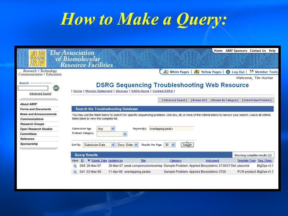How to Make a Query: