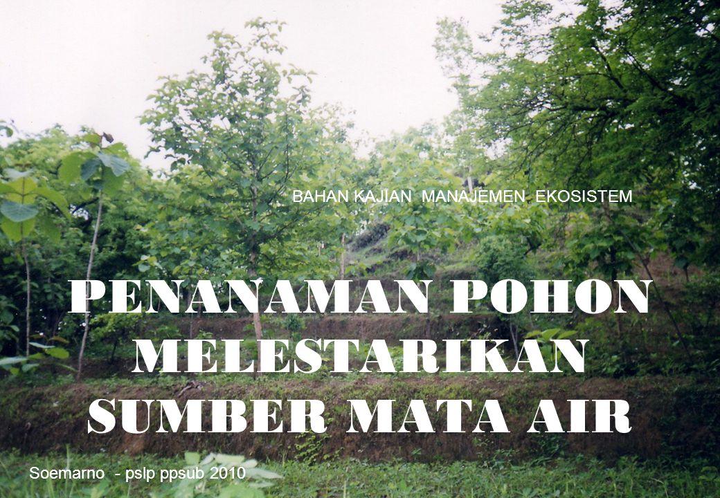 1 PENANAMAN POHON MELESTARIKAN SUMBER MATA AIR Soemarno - pslp ppsub 2010 BAHAN KAJIAN MANAJEMEN EKOSISTEM