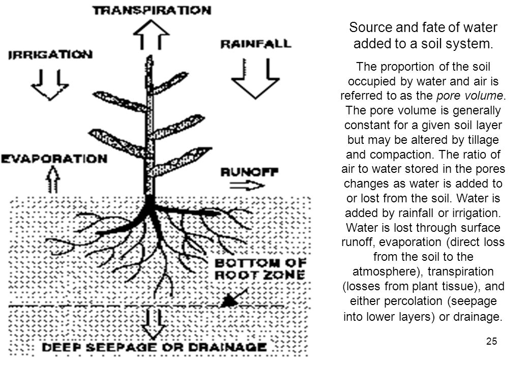 25 Source and fate of water added to a soil system.