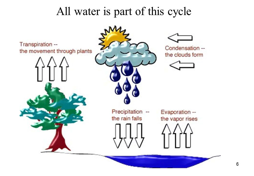 6 All water is part of this cycle