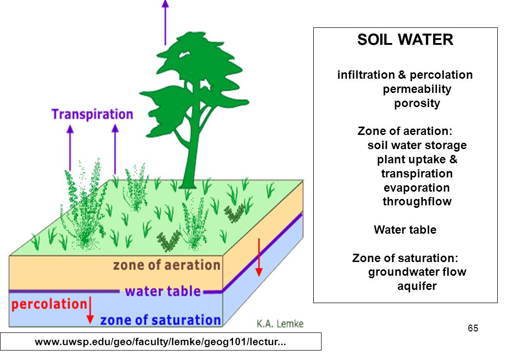 65 SOIL WATER infiltration & percolation permeability porosity Zone of aeration: soil water storage plant uptake & transpiration evaporation throughflow Water table Zone of saturation: groundwater flow aquifer